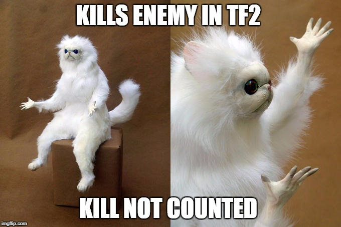Persian Cat Room Guardian Meme | KILLS ENEMY IN TF2 KILL NOT COUNTED | image tagged in memes,persian cat room guardian,tf2,kill,multiplayer,gamers | made w/ Imgflip meme maker