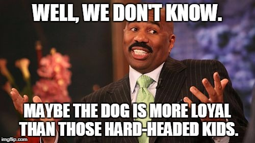 Steve Harvey Meme | WELL, WE DON'T KNOW. MAYBE THE DOG IS MORE LOYAL THAN THOSE HARD-HEADED KIDS. | image tagged in memes,steve harvey | made w/ Imgflip meme maker