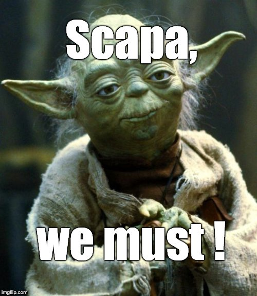 Star Wars Yoda Meme | Scapa, we must ! | image tagged in memes,star wars yoda | made w/ Imgflip meme maker