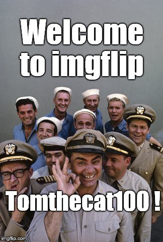 McHale's Navy | Welcome to imgflip Tomthecat100 ! | image tagged in mchale's navy | made w/ Imgflip meme maker