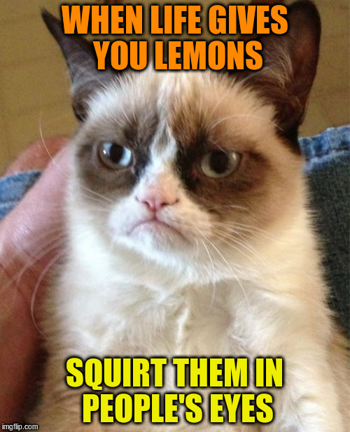 Grumpy Cat Meme | WHEN LIFE GIVES YOU LEMONS SQUIRT THEM IN PEOPLE'S EYES | image tagged in memes,grumpy cat | made w/ Imgflip meme maker