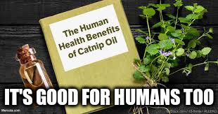 IT'S GOOD FOR HUMANS TOO | made w/ Imgflip meme maker