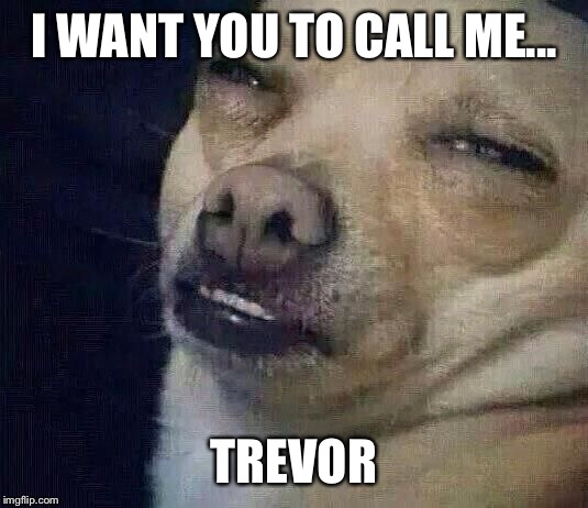 Too Dank | I WANT YOU TO CALL ME... TREVOR | image tagged in too dank | made w/ Imgflip meme maker
