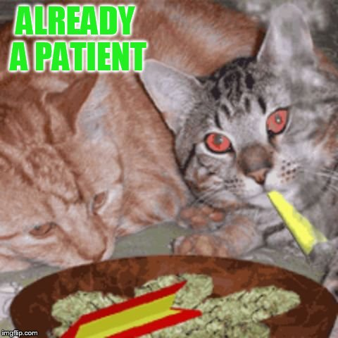 ALREADY A PATIENT | made w/ Imgflip meme maker