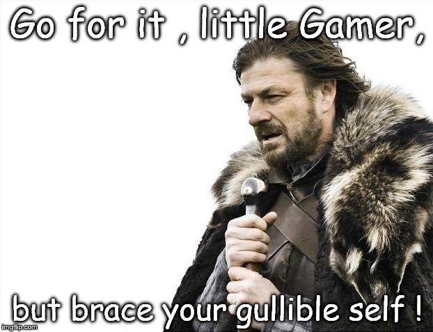 Brace Yourselves X is Coming Meme | Go for it , little Gamer, but brace your gullible self ! | image tagged in memes,brace yourselves x is coming | made w/ Imgflip meme maker