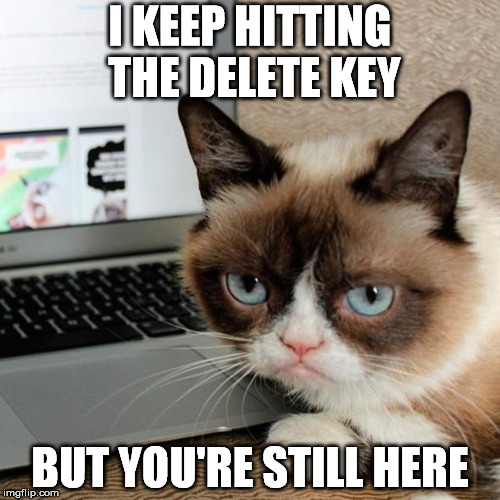 I KEEP HITTING THE DELETE KEY BUT YOU'RE STILL HERE | image tagged in grumpy cat,delete | made w/ Imgflip meme maker