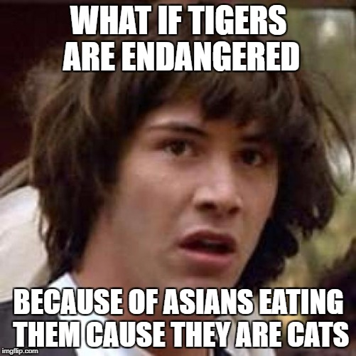 Conspiracy Keanu Meme | WHAT IF TIGERS ARE ENDANGERED BECAUSE OF ASIANS EATING THEM CAUSE THEY ARE CATS | image tagged in memes,conspiracy keanu | made w/ Imgflip meme maker