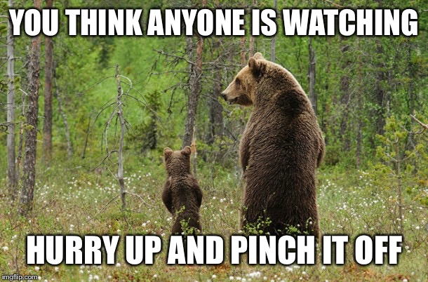 Bears pissing in woods | YOU THINK ANYONE IS WATCHING HURRY UP AND PINCH IT OFF | image tagged in pissing,watching,hurry up,pinch it | made w/ Imgflip meme maker