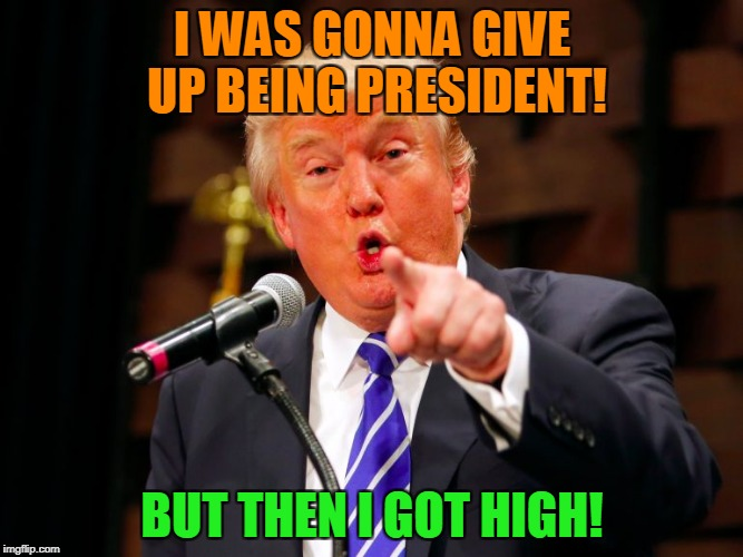 trump point | I WAS GONNA GIVE UP BEING PRESIDENT! BUT THEN I GOT HIGH! | image tagged in trump point | made w/ Imgflip meme maker