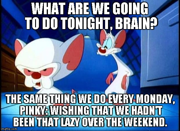 pinky and the brain monday | WHAT ARE WE GOING TO DO TONIGHT, BRAIN? THE SAME THING WE DO EVERY MONDAY, PINKY: WISHING THAT WE HADN'T BEEN THAT LAZY OVER THE WEEKEND. | image tagged in pinky and the brain monday | made w/ Imgflip meme maker