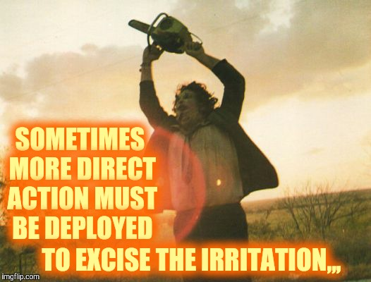 Leatherface | SOMETIMES MORE DIRECT ACTION MUST BE DEPLOYED TO EXCISE THE IRRITATION,,, | image tagged in leatherface | made w/ Imgflip meme maker