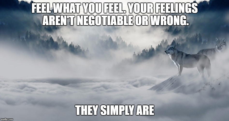Feel what you Feel | FEEL WHAT YOU FEEL. YOUR FEELINGS AREN'T NEGOTIABLE OR WRONG. THEY SIMPLY ARE | image tagged in grief,loss,feelings,healing,inspirational,love | made w/ Imgflip meme maker