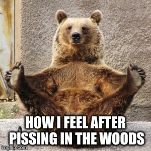 HOW I FEEL AFTER PISSING IN THE WOODS | made w/ Imgflip meme maker