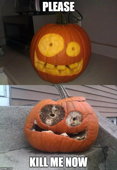 PLEASE KILL ME NOW | image tagged in meth pumpkin | made w/ Imgflip meme maker
