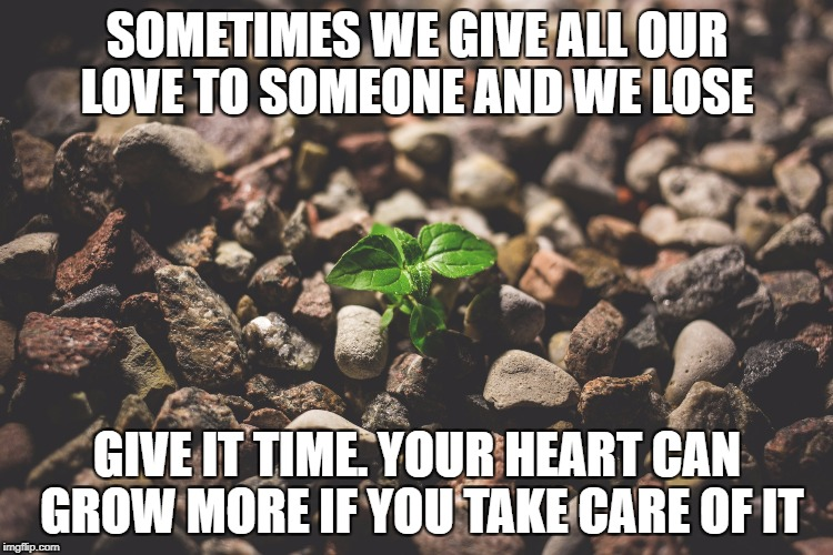 Let the Heart Grow | SOMETIMES WE GIVE ALL OUR LOVE TO SOMEONE AND WE LOSE GIVE IT TIME. YOUR HEART CAN GROW MORE IF YOU TAKE CARE OF IT | image tagged in loss,love,healing,grief,hope,inspiration | made w/ Imgflip meme maker