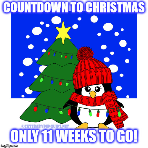 Countdown to Christmas | COUNTDOWN TO CHRISTMAS ONLY 11 WEEKS TO GO! | image tagged in penguin,christmascountdown,christmas,snow,fairylights,christmastree | made w/ Imgflip meme maker