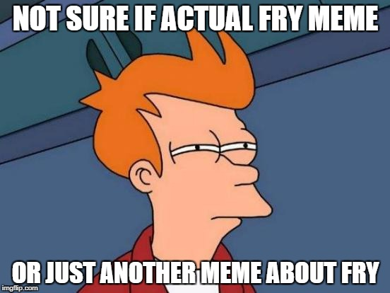 Futurama Fry Meme | NOT SURE IF ACTUAL FRY MEME OR JUST ANOTHER MEME ABOUT FRY | image tagged in memes,futurama fry | made w/ Imgflip meme maker