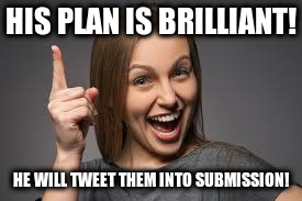 HIS PLAN IS BRILLIANT! HE WILL TWEET THEM INTO SUBMISSION! | image tagged in eureka face | made w/ Imgflip meme maker