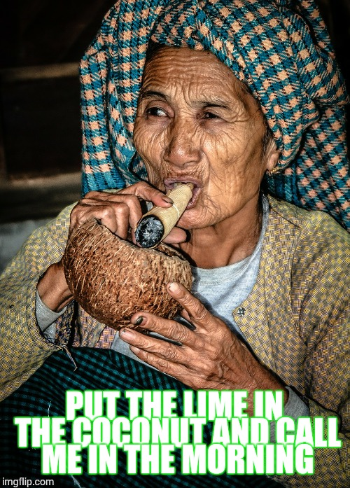 Put the Lime in the Coconut | PUT THE LIME IN THE COCONUT AND CALL ME IN THE MORNING | image tagged in loyalsockatxhamster,coconut,420,fun stuff,granny,reaction gifs | made w/ Imgflip meme maker
