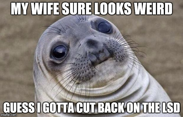 Awkward Moment Sealion Meme | MY WIFE SURE LOOKS WEIRD GUESS I GOTTA CUT BACK ON THE LSD | image tagged in memes,awkward moment sealion | made w/ Imgflip meme maker