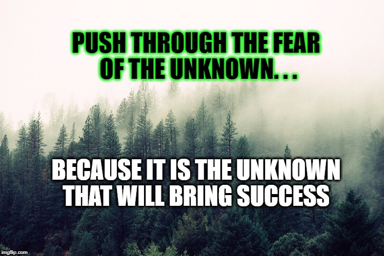 The unknown | BECAUSE IT IS THE UNKNOWN THAT WILL BRING SUCCESS PUSH THROUGH THE FEAR OF THE UNKNOWN. . . | image tagged in life,motivation,nature,goal,inspirational quote,inspirational | made w/ Imgflip meme maker
