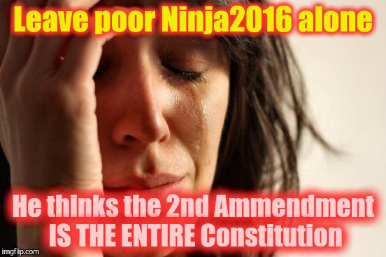 First World Problems Meme | Leave poor Ninja2016 alone He thinks the 2nd Ammendment IS THE ENTIRE Constitution | image tagged in memes,first world problems | made w/ Imgflip meme maker