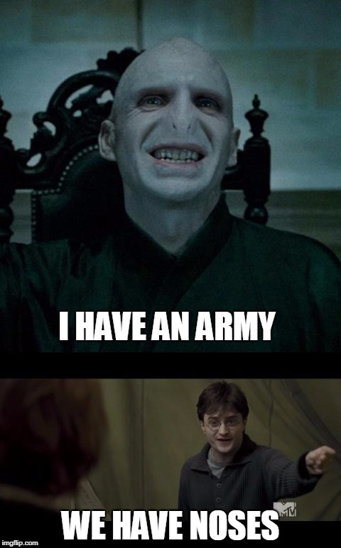 Voldemort Gets Recked |  I HAVE AN ARMY; WE HAVE NOSES | image tagged in memes,meme,funny memes,harry potter,voldemort,i have an army | made w/ Imgflip meme maker