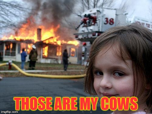 Disaster Girl Meme | THOSE ARE MY COWS | image tagged in memes,disaster girl | made w/ Imgflip meme maker