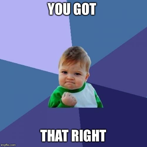 Success Kid Meme | YOU GOT THAT RIGHT | image tagged in memes,success kid | made w/ Imgflip meme maker
