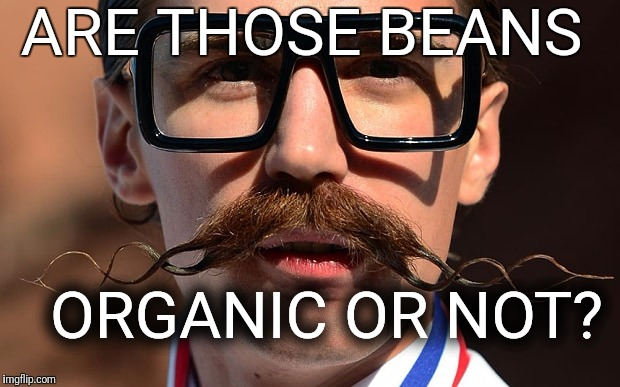 Hipster | ARE THOSE BEANS ORGANIC OR NOT? | image tagged in hipster | made w/ Imgflip meme maker