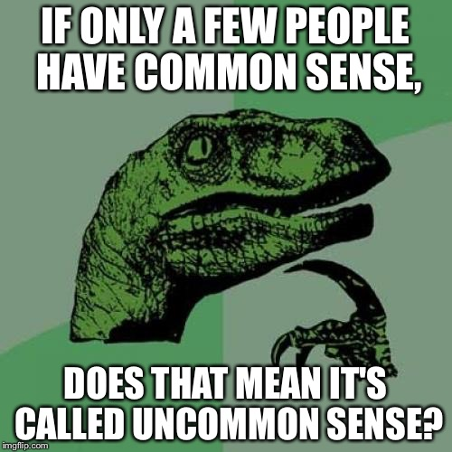 Philosoraptor Meme | IF ONLY A FEW PEOPLE HAVE COMMON SENSE, DOES THAT MEAN IT'S CALLED UNCOMMON SENSE? | image tagged in memes,philosoraptor | made w/ Imgflip meme maker