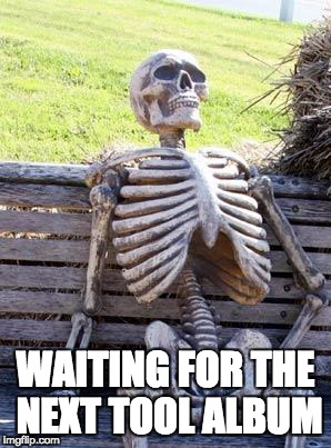 Waiting Skeleton Meme | WAITING FOR THE NEXT TOOL ALBUM | image tagged in memes,waiting skeleton | made w/ Imgflip meme maker