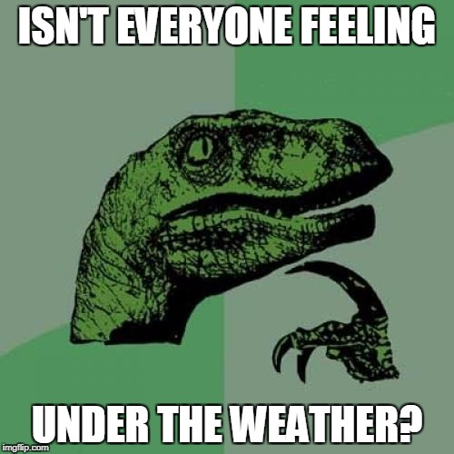 Just think about this one for a minute | ISN'T EVERYONE FEELING UNDER THE WEATHER? | image tagged in memes,philosoraptor | made w/ Imgflip meme maker