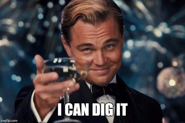 Leonardo Dicaprio Cheers Meme | I CAN DIG IT | image tagged in memes,leonardo dicaprio cheers | made w/ Imgflip meme maker