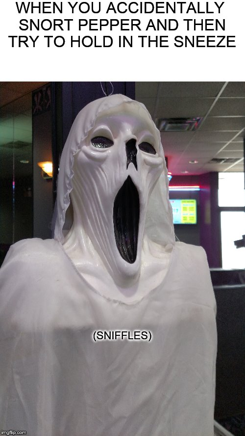 Sneezy Ghost |  WHEN YOU ACCIDENTALLY SNORT PEPPER AND THEN TRY TO HOLD IN THE SNEEZE; (SNIFFLES) | image tagged in ghost,sneezing | made w/ Imgflip meme maker