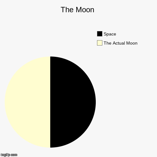 The Moon | The Actual Moon, Space | image tagged in funny,pie charts | made w/ Imgflip chart maker