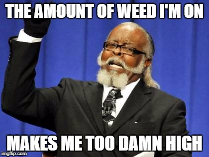 The weed makes high | THE AMOUNT OF WEED I'M ON MAKES ME TOO DAMN HIGH | image tagged in memes,too damn high | made w/ Imgflip meme maker
