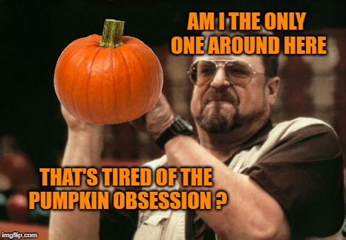 AM I THE ONLY ONE AROUND HERE THAT'S TIRED OF THE PUMPKIN OBSESSION ? | image tagged in am i the only one around here,pumpkin,pumpkin spice,obsessed | made w/ Imgflip meme maker