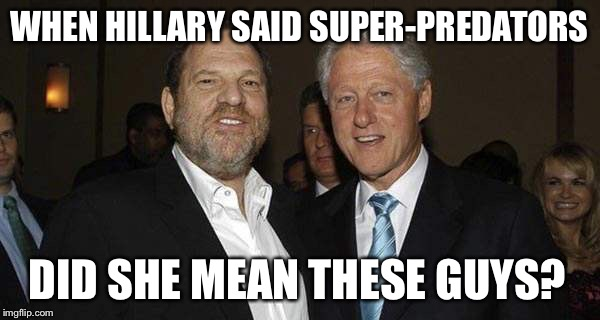 WHEN HILLARY SAID SUPER-PREDATORS DID SHE MEAN THESE GUYS? | image tagged in birds of a feather,bill clinton - sexual relations,harvey weinstein,to catch a predator,liberalism is a mental disorder,liberal | made w/ Imgflip meme maker