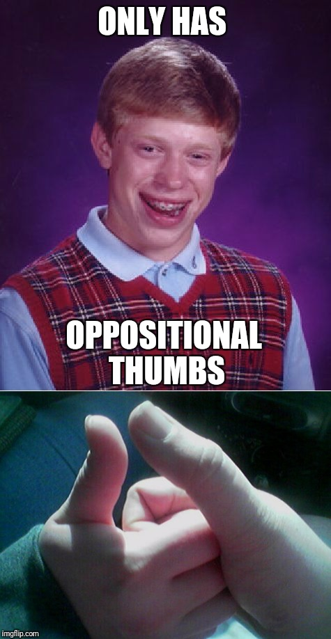 ONLY HAS OPPOSITIONAL THUMBS | made w/ Imgflip meme maker
