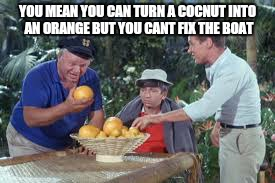 YOU MEAN YOU CAN TURN A COCNUT INTO AN ORANGE BUT YOU CANT FIX THE BOAT | made w/ Imgflip meme maker