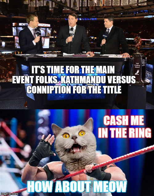Battle for the Title  | IT'S TIME FOR THE MAIN EVENT FOLKS. KATHMANDU VERSUS CONNIPTION FOR THE TITLE HOW ABOUT MEOW CASH ME IN THE RING | image tagged in cats,wrestling,memes,funny memes,sport memes | made w/ Imgflip meme maker