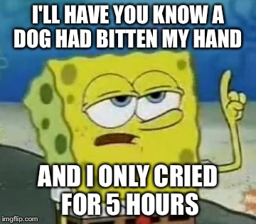 Ill Have You Know Spongebob Meme | I'LL HAVE YOU KNOW A DOG HAD BITTEN MY HAND AND I ONLY CRIED FOR 5 HOURS | image tagged in memes,ill have you know spongebob | made w/ Imgflip meme maker