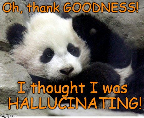 Oh, thank GOODNESS! I thought I was HALLUCINATING! | made w/ Imgflip meme maker