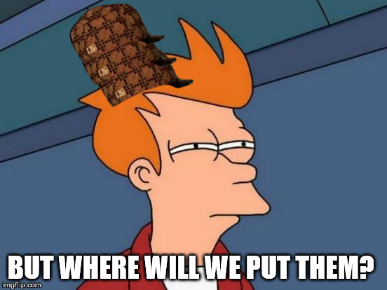 BUT WHERE WILL WE PUT THEM? | image tagged in memes,futurama fry,scumbag | made w/ Imgflip meme maker