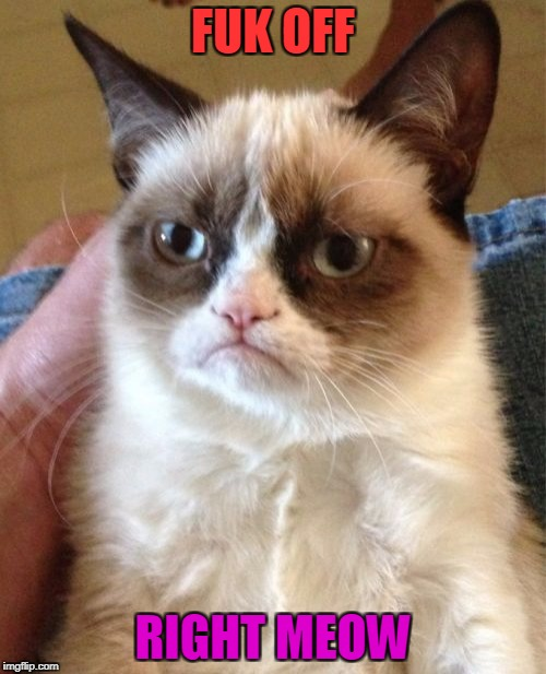 Grumpy Cat Meme | FUK OFF RIGHT MEOW | image tagged in memes,grumpy cat | made w/ Imgflip meme maker