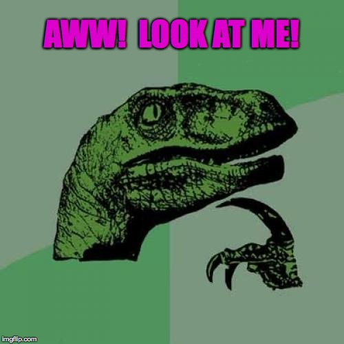 Philosoraptor Meme | AWW!  LOOK AT ME! | image tagged in memes,philosoraptor | made w/ Imgflip meme maker