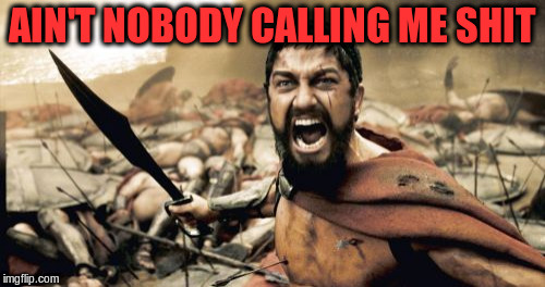 Sparta Leonidas Meme | AIN'T NOBODY CALLING ME SHIT | image tagged in memes,sparta leonidas | made w/ Imgflip meme maker