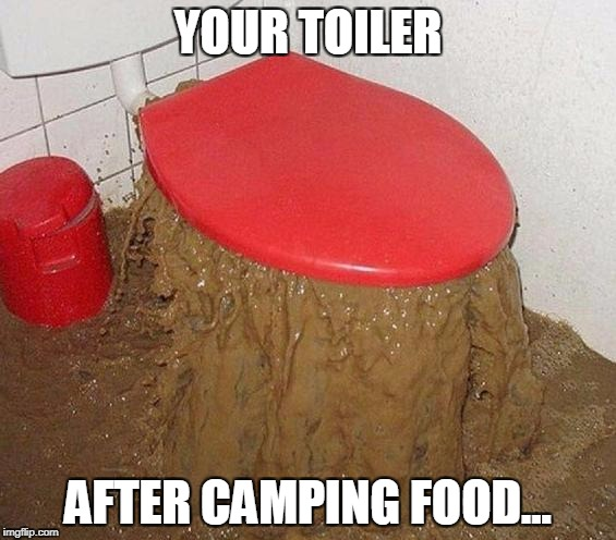 Shit | YOUR TOILER AFTER CAMPING FOOD... | image tagged in shit | made w/ Imgflip meme maker