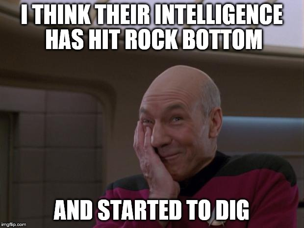 Stupid Joke Picard | I THINK THEIR INTELLIGENCE HAS HIT ROCK BOTTOM AND STARTED TO DIG | image tagged in stupid joke picard | made w/ Imgflip meme maker